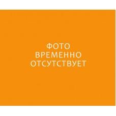 Комплект «Плазан-систем» (курс)